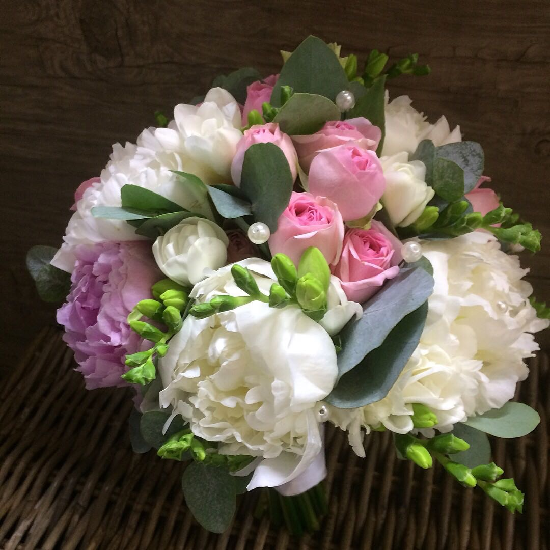 Фото живых цветов фрезия